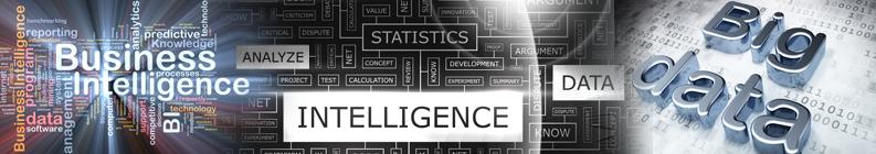 Inteligência de Negócio Logo